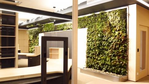 Interiér pracoviště s vertikální zahradou